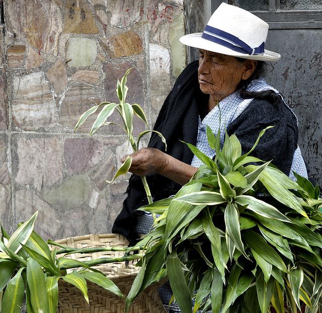 Cómo prevenir la pérdida de patrimonio cultural en América Latina