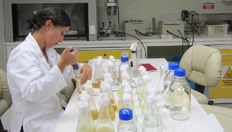 CRISPR/Cas: El último y quizá más revolucionario avance biotecnológico