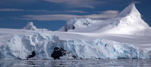 El ecosistema marino de la Antártida, el chile fue domesticado en México, y el chikungunya en Latinoamérica