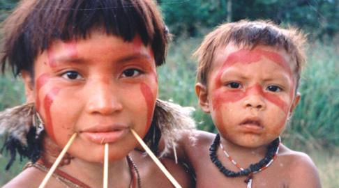 Start ups mexicanas, fósiles en Argentina, y la cultura indígena Yanomami