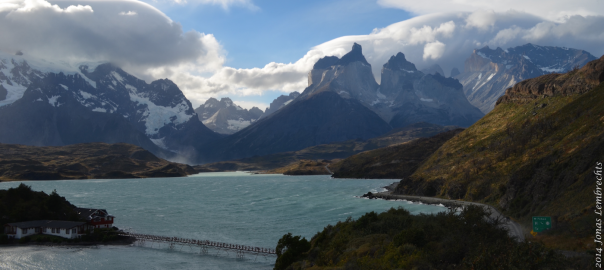 Las plantas invasoras llegan a nuevas alturas en Chile