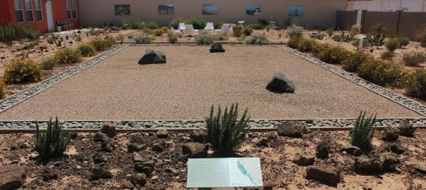Propuestas desde México para enfrentar los retos de las regiones mediterráneas