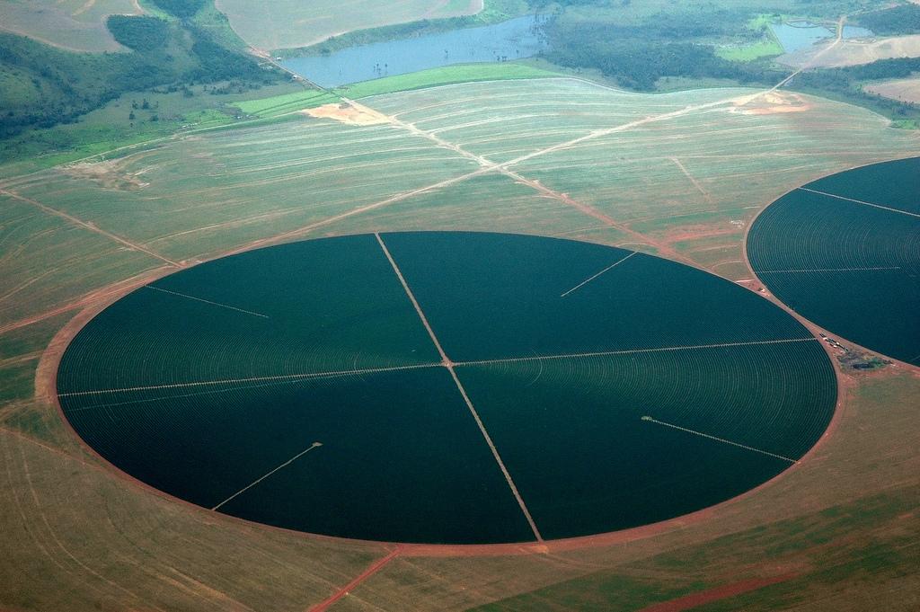 Brazil's bioeconomy: from petroleum-based to biology-based