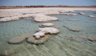 The Atacama Desert's diamonds in the rough