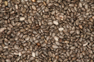 Surveying São Paulo's drought, monarch butterflies in danger, and is the chia fad sustainable?