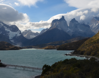 Invasive plants reaching new elevations in Chile
